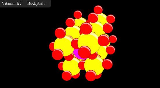 webkit molecule